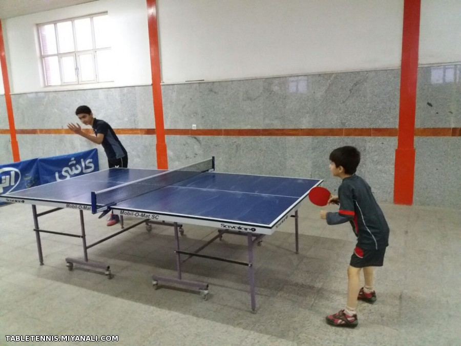 مسابقات تنیس روی میز هفته وحدت