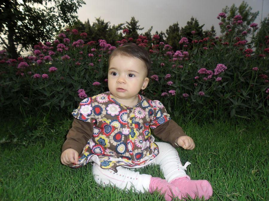 النا محسنی