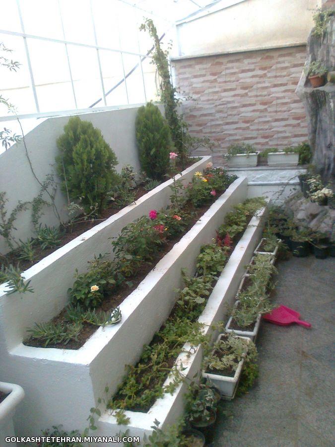 باغچه پله ای در پشت بام