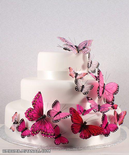 پروانه عزیزم تولدت مبارک( شرمنده دیرشد)