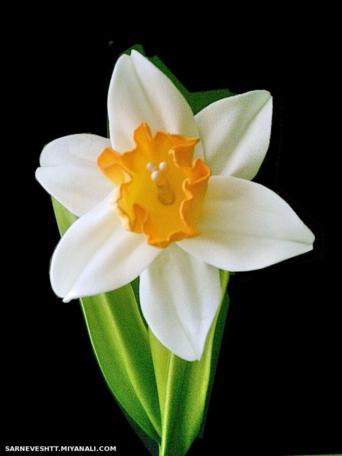 Поделки цветы из фоамирана