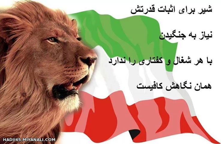 Image result for غرش شیر